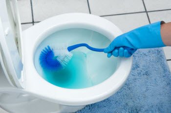 Blue Toilet Bowl Cleaner Stain