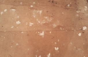 mold-spots-on-wood