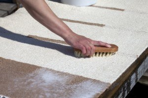 How to clean Carpets and Rugs: How to Remove a Traffic Dirt Path from Carpet