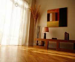 clean hardwood floors with hydrogen