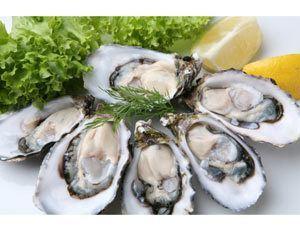 oystershells