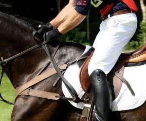 ridingpants