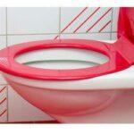 toiletseatstains